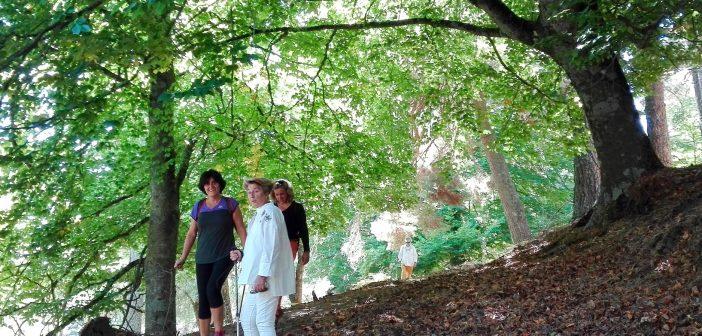 Caminatas con Graellsia y El Caminante y su Sombra ECOfinde San Lorenzo de El Escorial