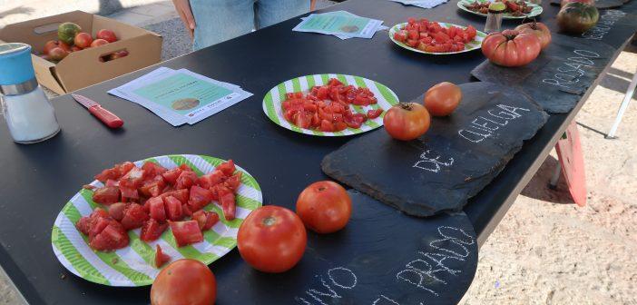 Mercado de productos ecológicos en ECOfinde San Lorenzo de El Escorial
