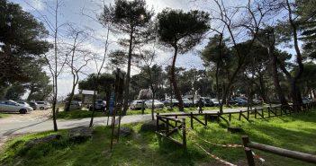 Zonas naturales San Lorenzo de El Escorial - Monte Abantos - El Tomilar